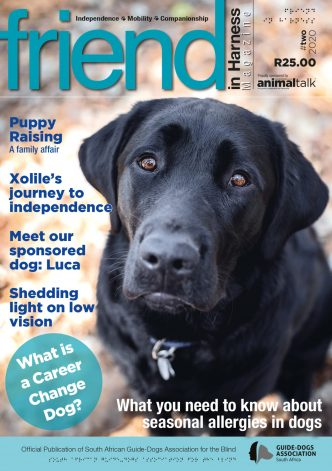 South African Guide-Dogs Association for the Blind friend in Harness 2-2020
